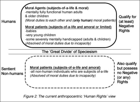 Anthropocentric Rights View